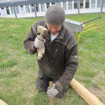 Håndværker slår med hammer for at sætte nyt bålhus op